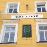 Straßenansicht in Franzensbad, hier logierte Goethe
